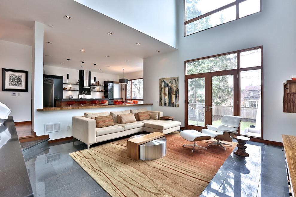 contemporary-living-room1
